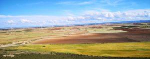 Parques eólicos: proyectos Phoenix & Goya