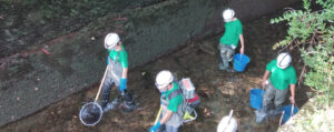 Las especies rescatadas son liberadas en el río Noguera Pallaresa